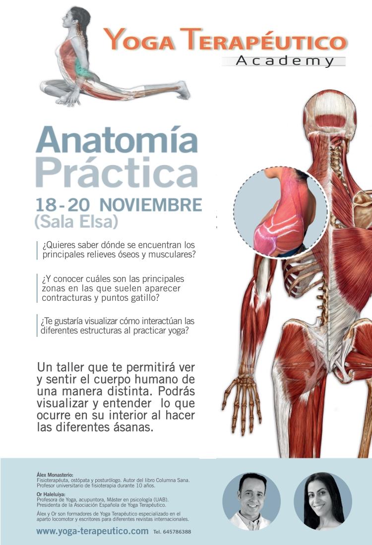 """Taller """"Anatomía práctica"""" movimiento muscular y óseo en el yoga ..."""